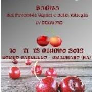 Sagra della Ciliegia e dei Prodotti Tipici 2016 a Gragnano