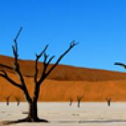 namibia Viaggio nella Memoria primordiale