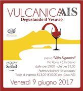vulcanicais 2017