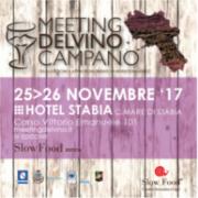 meeting Vino Campano 2017