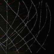 il Cerchio La Shoah