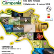 tesori Natura Campania