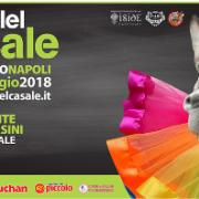 palio Casale 2018