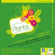 planta 2019