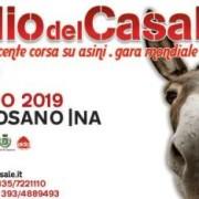 palio Casale 2019