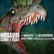 dinosauri Carne Ossa