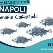 baccalare 2018